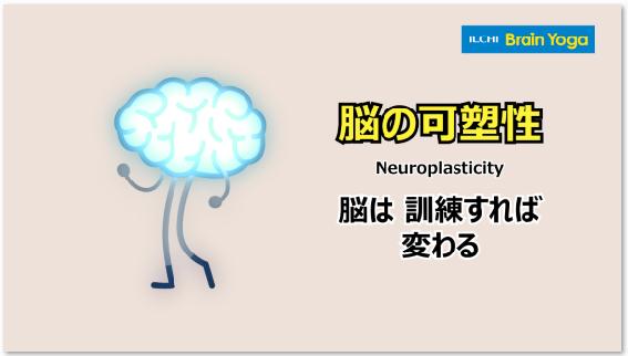 動画でイルチブレインヨガ 脳は変化するのか – 脳の可塑性と脳教育①